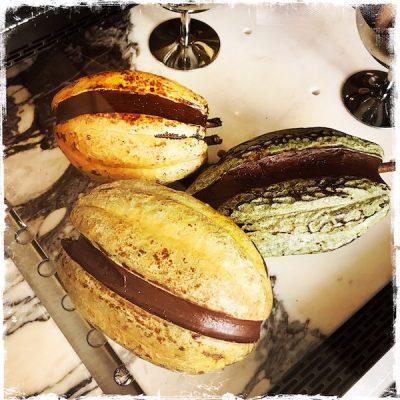 Cabosse de cacao givrée Fruttini by MO