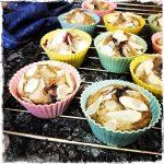 "Muffins aux myrtilles extraient de ""Green Protéines"" de Stéphanie Tresch-Medici"